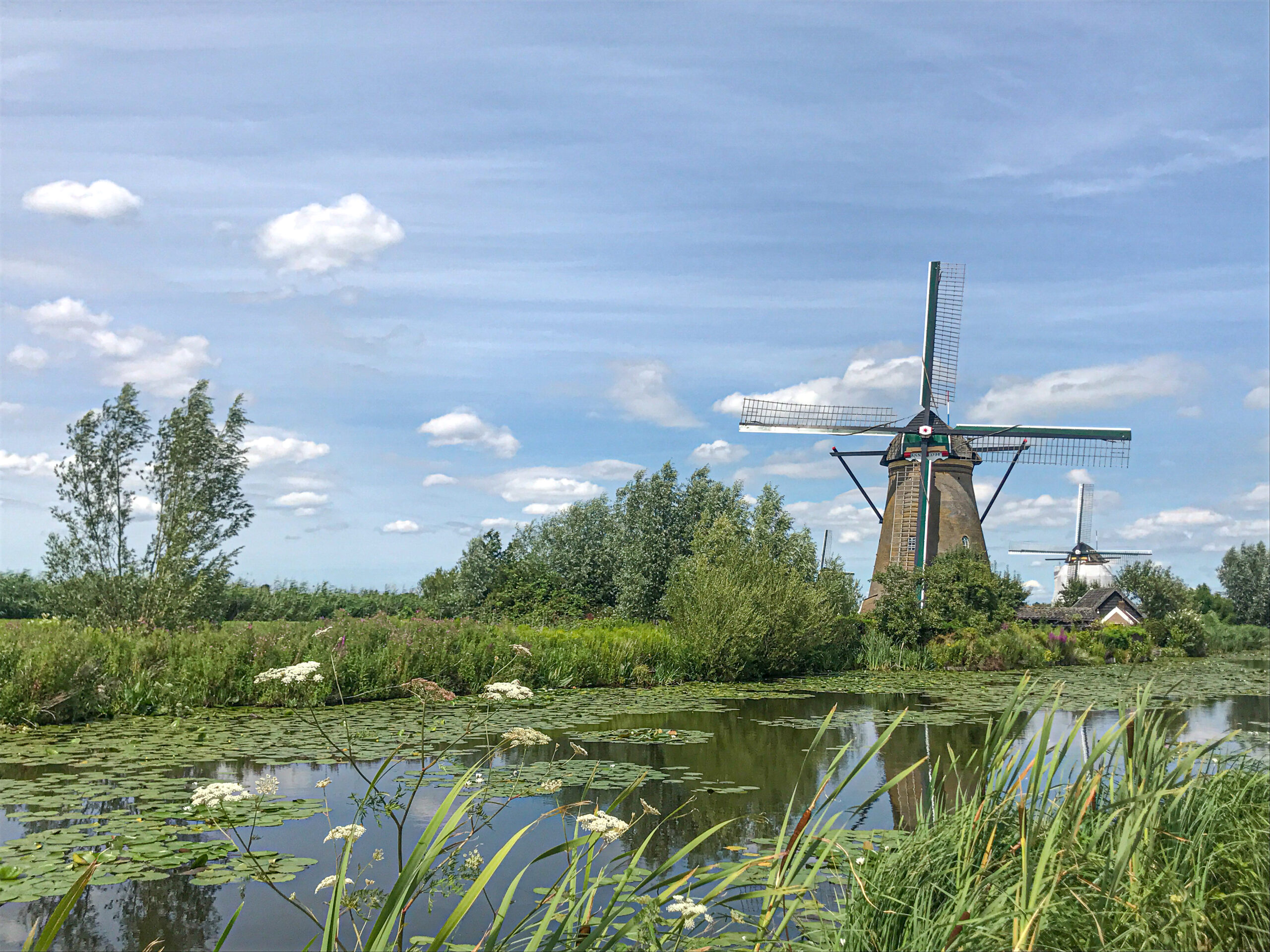 Dutch Phrases Every Traveler Should Know